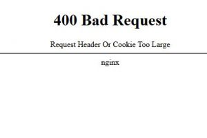 400 bad request request header